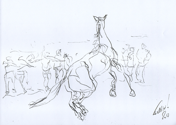 DR 80 - Horse racing